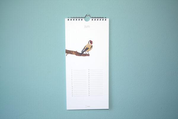 Kalender Birdday 06
