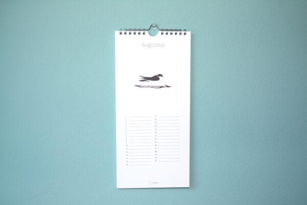 Kalender Birdday 08