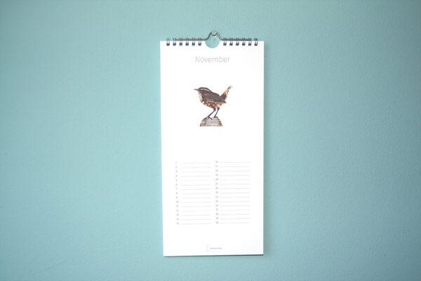 Kalender Birdday 11